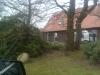 am Baumweg